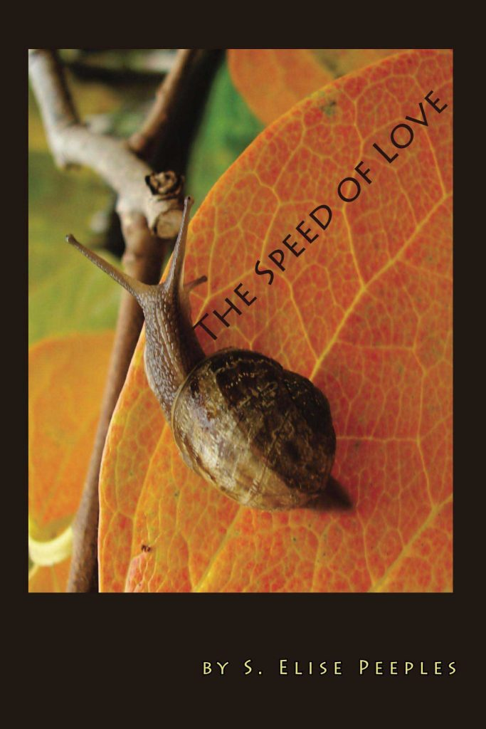 cover of speed of love